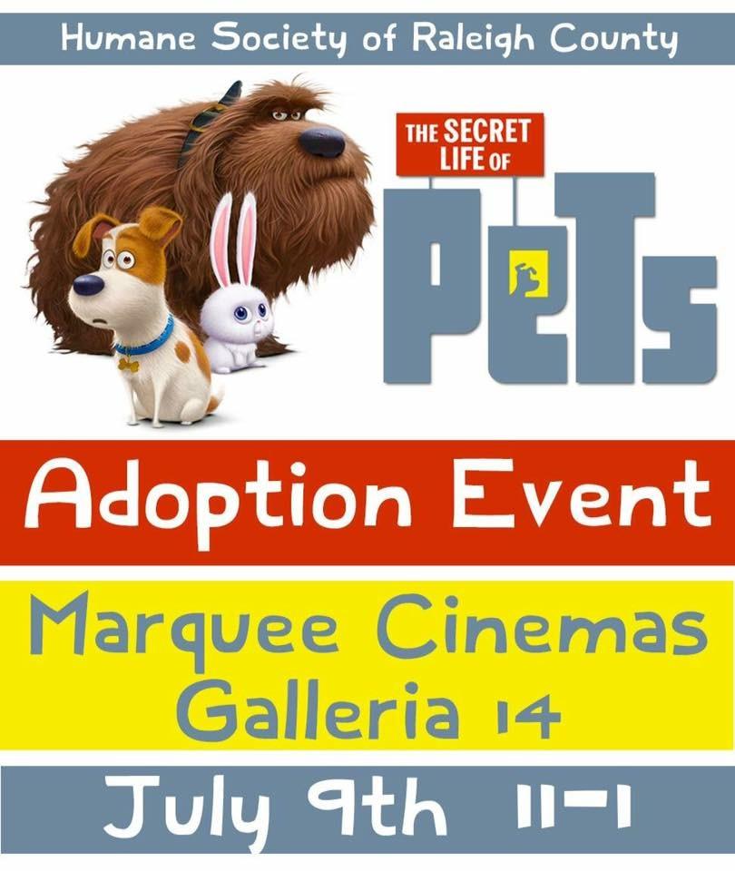 Marquee Cinema Adoption Event Hsrcwv