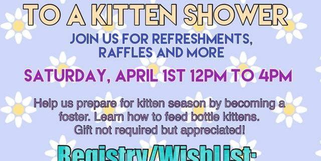 Kitty Adoption Event