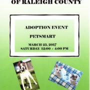 Petsmart Adoption