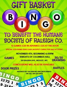 Bingo Flyer Reviesed