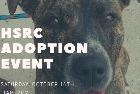 Pets Supplies Plus Adoption Event