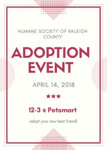 PetSmart Adoption Event (4-17)